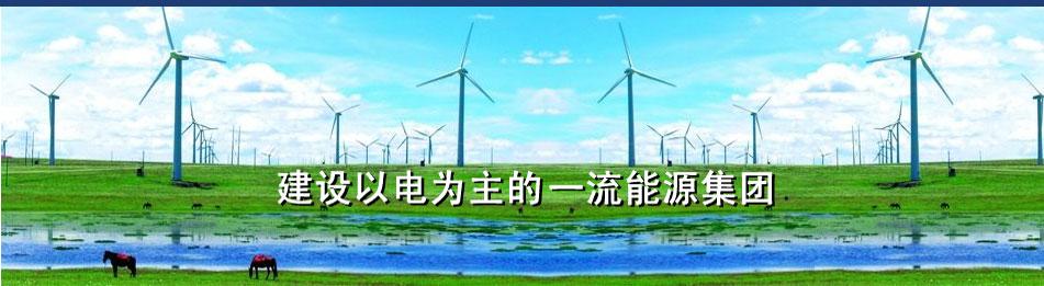 华电新能源技术开发公司